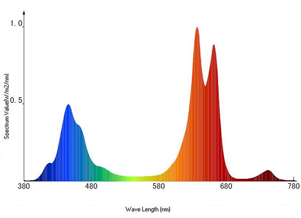 Спектр излучения полноспектральных светодиодов